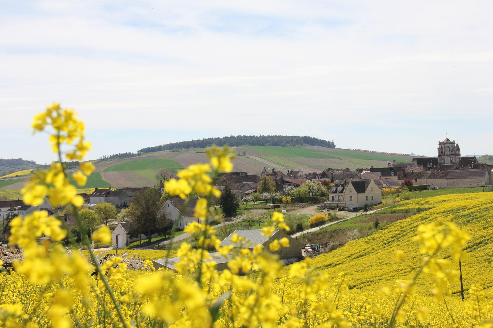 Saint-Bris
